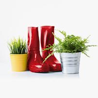 Trädgårdsplantering