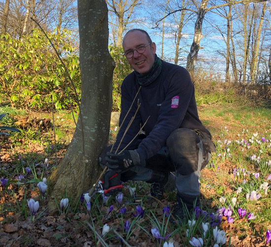Trädgårdsservice med Ted från TrädgårdsAnna