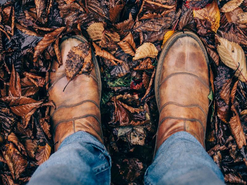 Ogräsrensning, lövräfsning, vår och höststädning, vertikalskärning av gräsmattan, gödsling av rabatter och gräsmatta-